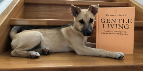Ein Handbuch für nette Menschen – und solche, die es werden wollen
